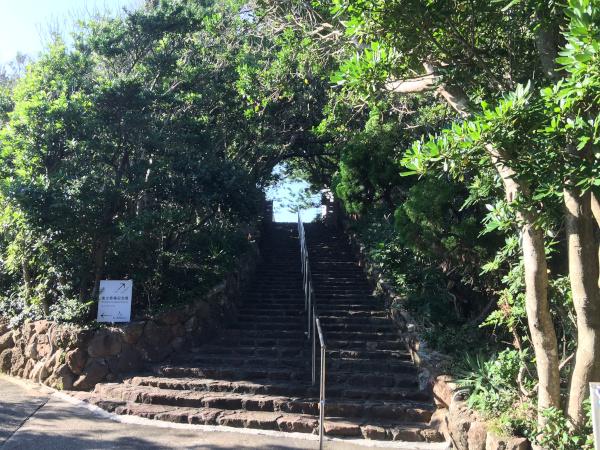 南方熊楠記念館への木のトンネル
